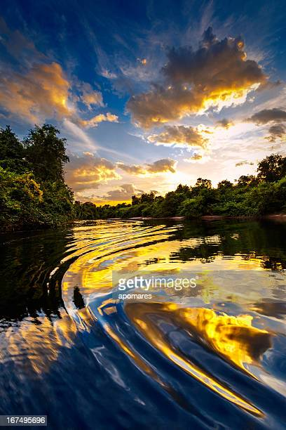 Dramatic landscape on a river in the amazon state Venezuela