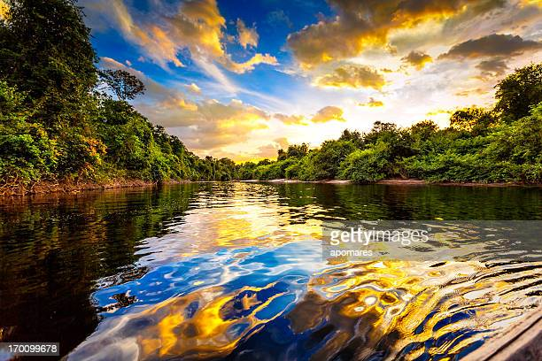 Paisagem espetacular sobre um rio da amazon de Venezuela