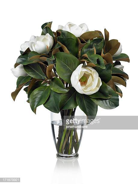 Dramatic Magnolia bouquet on a white background