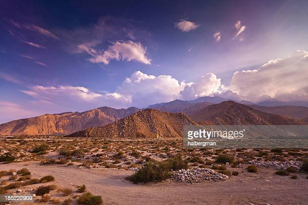 Dramatic Palm Springs Landscape