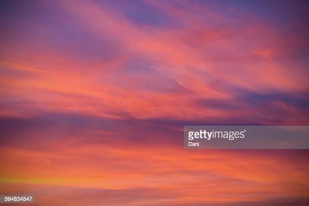 Dramatic pink sky