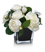 Dramatic Rose and Camellia bouquet on white background