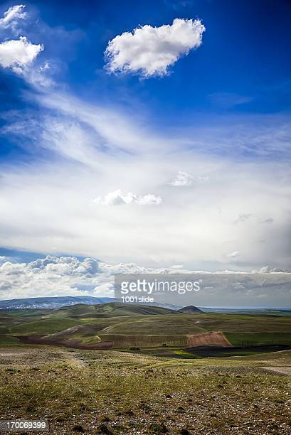 Dramatic Sky - Green Field and unplowed area