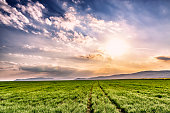 Dramatic sunset with dirt rural road and foggy hills on horizon. Magic evening landscape in Slovakia