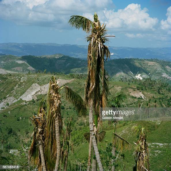 Haiti Poverty Stock Photos And Pictures
