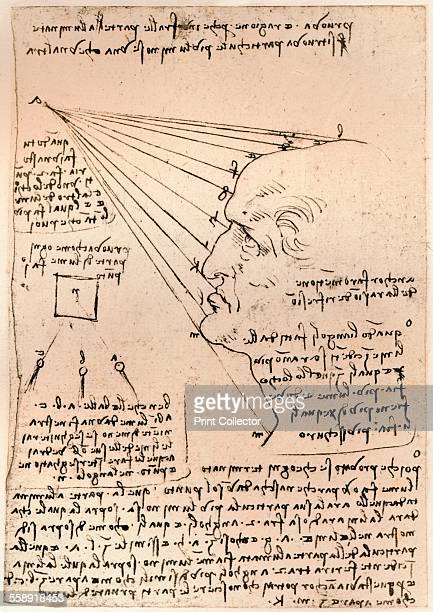 Drawing of a male head illustrating the practice of painting c1472c1519 From The Literary Works of Leonardo Da Vinci Vol 1 by Jean Paul Richter PH DR...