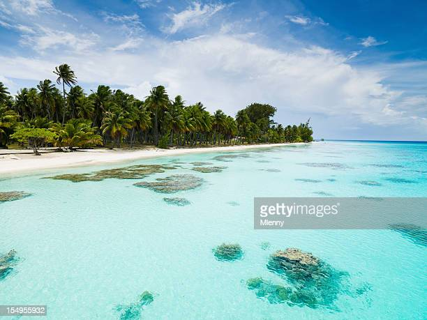 Dream Beach Summer Holiday Fakarava Tuamotu Archipelago French Polynesia