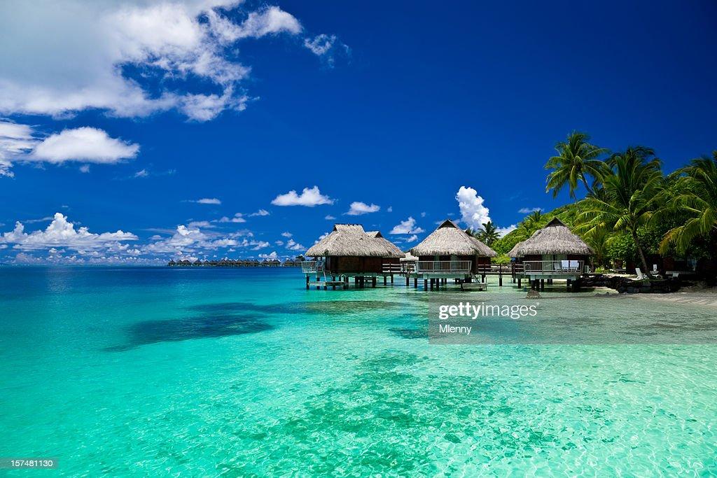 Dream Holiday Luxury Resort