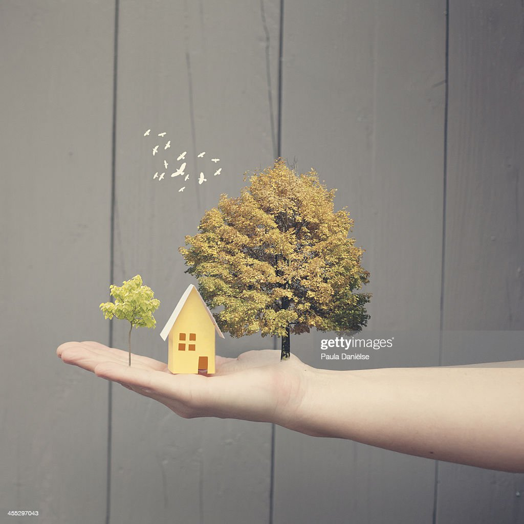Dream landscape : Foto de stock