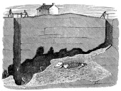Dream Lead Mine near Wirksworth Derbyshire 1881 Sectional view showing the workings and the position in which a skeleton of a rhinoceros was...