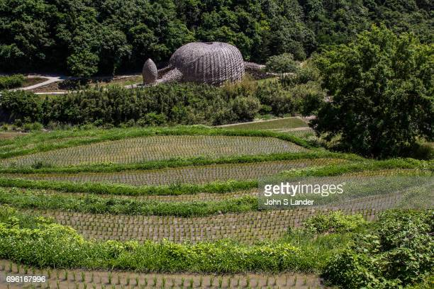 NAIKAI SHODOSHIMA KAGAWA JAPAN Dream of Olive by artist Wang Wen Chih is a large dome made of over locally grown bamboo The theme is olives which is...