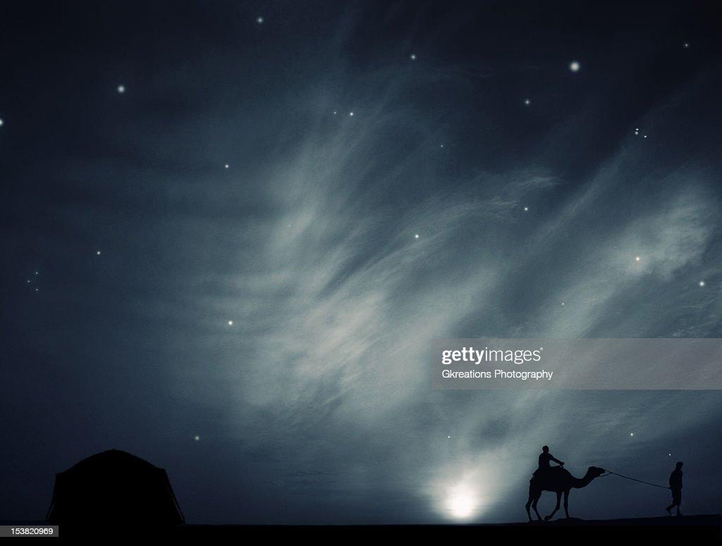 Dreamy Night : Stock Photo