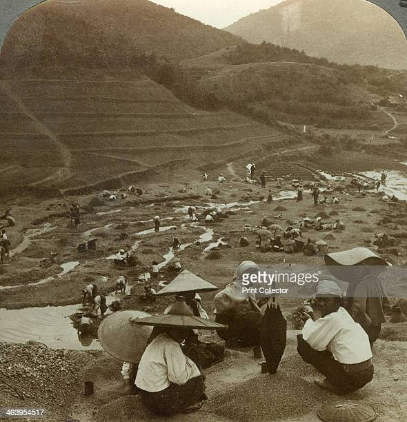 Dredging a river bed for rubies Mogok Burma c1900s Stereoscopic card