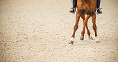 Advanced dressage test. Copy space for your text