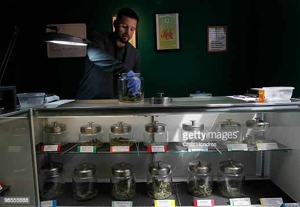 Drew Brown a vice president of 'Abundant Healing' goes through some of his marijuana supply April 19 2010 in Fort Collins Colorado Abundent Healing...