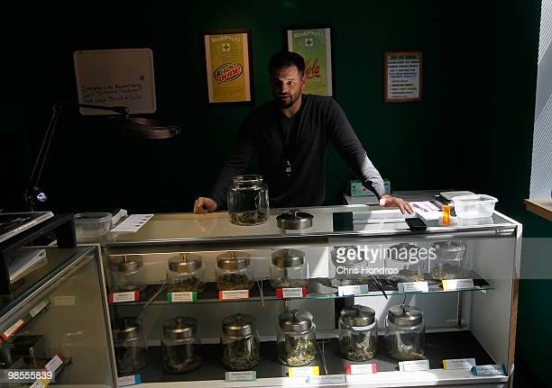 Drew Brown a vice president of 'Abundant Healing' stands by some of his marijuana supply April 19 2010 in Fort Collins Colorado Abundent Healing is...