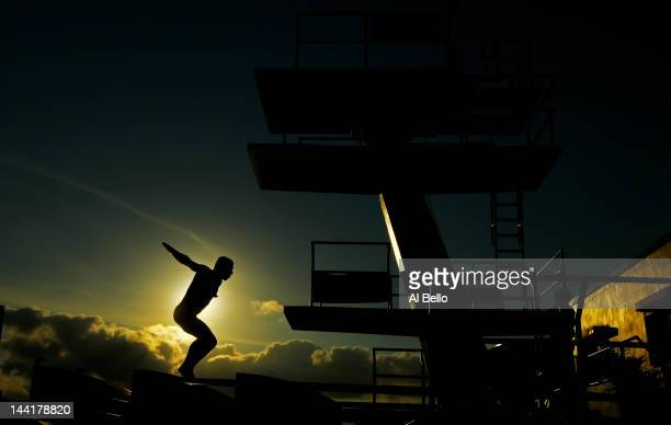Drew Livingstone of the USA dives during a training session at the Fort Lauderdale Aquatic Center on Day 2 of the ATT USA Diving Grand Prix on May 11...