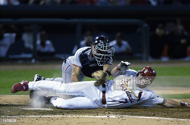 D Drew of the St Louis Cardinals is tagged out at the plate by Benito Santiago of the San Francisco Giants on October 10 2002 during Game 2 of the...