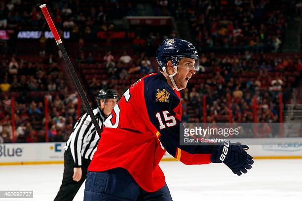 Drew Shore of the Florida Panthers celebrates his goal against the New York Islanders at the BBT Center on January 14 2014 in Sunrise Florida