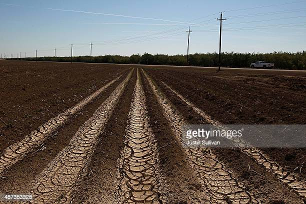 Dried and cracked earth is visible on an unplanted field at a farm on April 29 2014 near Mendota California As the California drought continues...