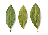 Dried bay leaves isolated on white with clipping path