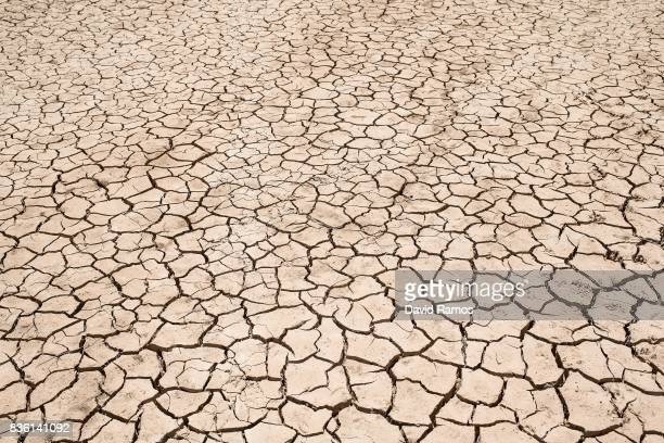 Dried cracked mud is seen at Entrepenas reservoir second largest water reservoir feeding the Segura River and Spain's Southeastern regions which is...