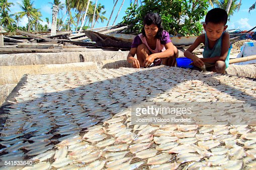 Dried Fish Making Process (Santa Fe, Bantayan Island, Cebu, Philippines)