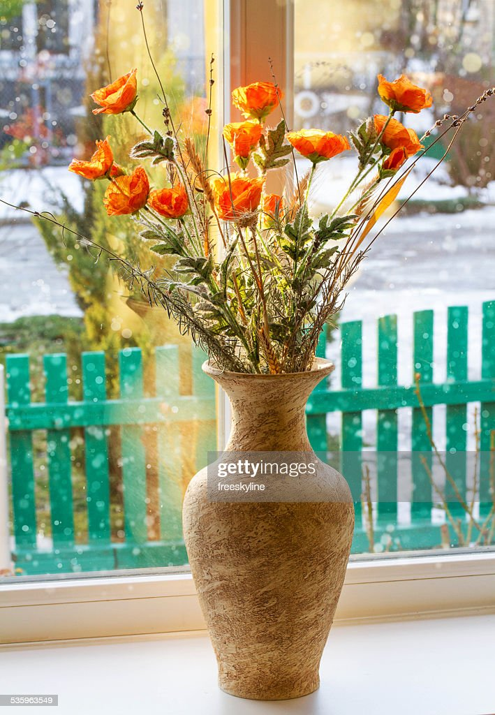 Dried flowers in a vase on a window : Stock Photo