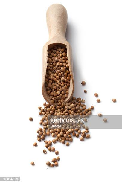 Dried Herbs and Spices: Coriander Seed