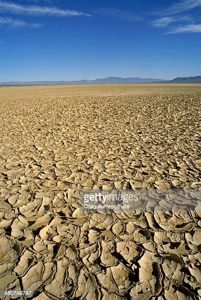 Dried Lake Bed
