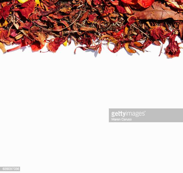 Dried leaves and flowers