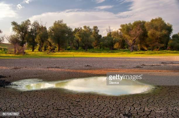 Desséchées lac pendant la sécheresse en été