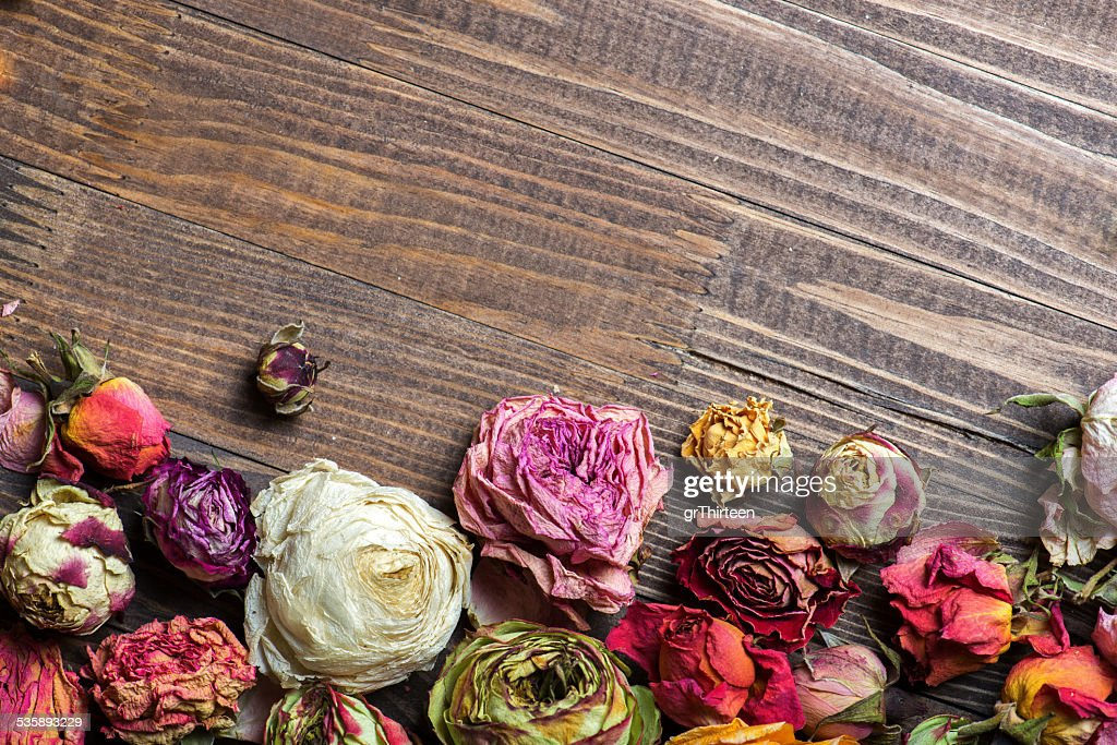 Dried roses. Valentines background. : Stock Photo