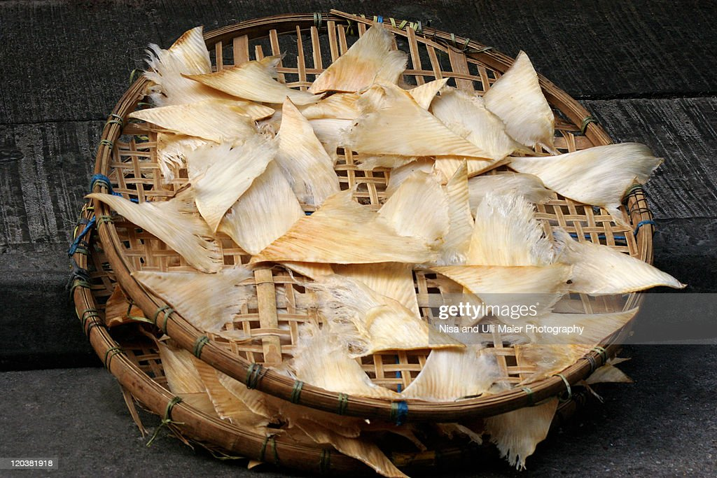 Dried shark fins at market in China