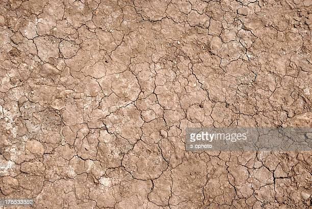 Terreno secco (fare clic per ulteriori informazioni)