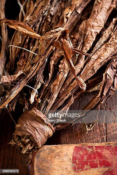 Dried tobacco sit on a table, waiting to be rolled into cigars.