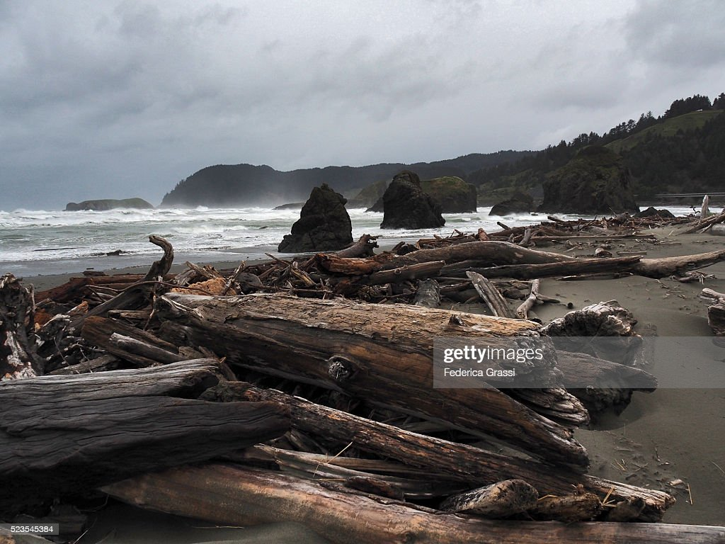 Driftwood At Meyers Beach South, Pistol River State Park, Brookings, Oregon