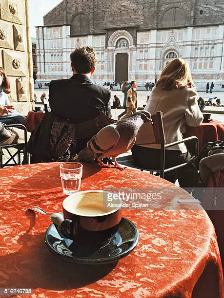 Drinking cappuccino with pigeon on the table on Piazza Maggiore, Bologna