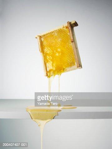 Dripping honey tray