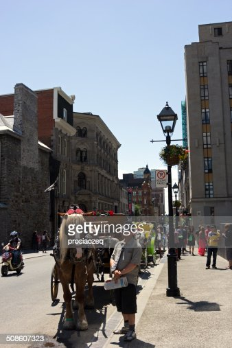 Driver in front of the horse-drawn carriage in Montreal : Stock Photo