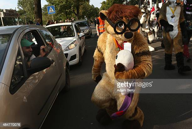 A driver of a passing car photographs a Furry enthusiast with his mobile phone at the Eurofurence 2015 conference on August 21 2015 in Berlin Germany...