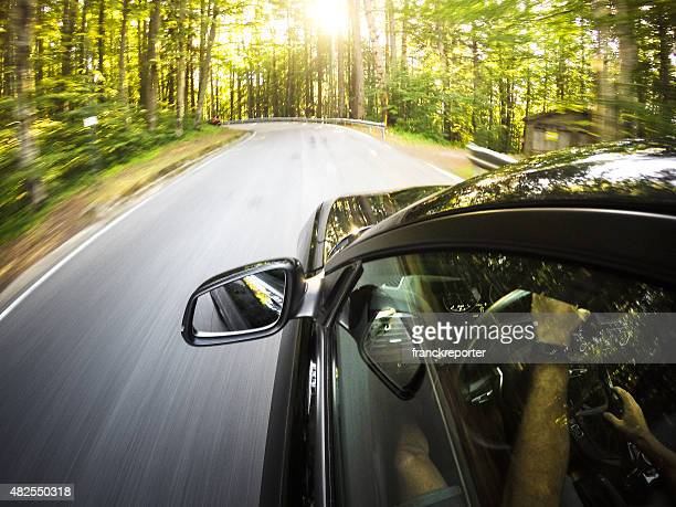 Driving fast on the forest