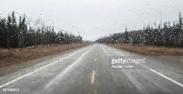Driving the Alaska Highway on a rainy day.