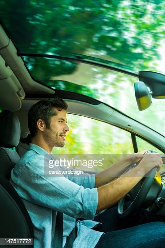 Driving through a forest : Stock Photo