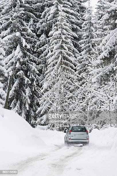 SUV driving through snowy forest