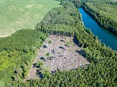 drone image. aerial view of rural area lake in forest with green water. latvia