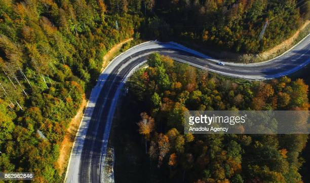 A drone photo shows an aerial view of the deep spot forests displaying autumnal colors during autumn in Turkey's Kirklareli on October 19 2017