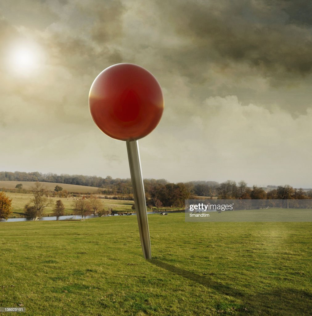 Drooped pin in the fields on a warm day : Foto de stock