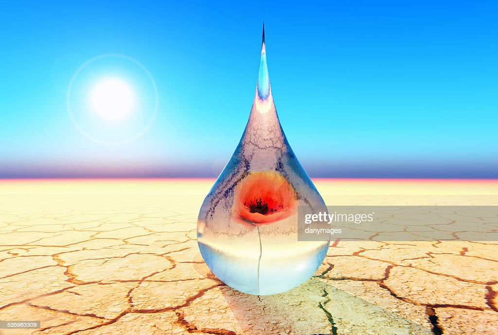 drop for life : Stock Photo