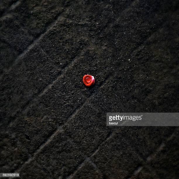 Drop of dew in a rose petal on black floor